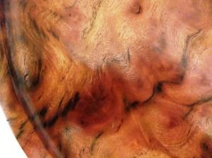 Lustrous wood