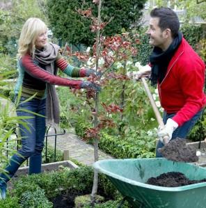 Couple-planting-tree